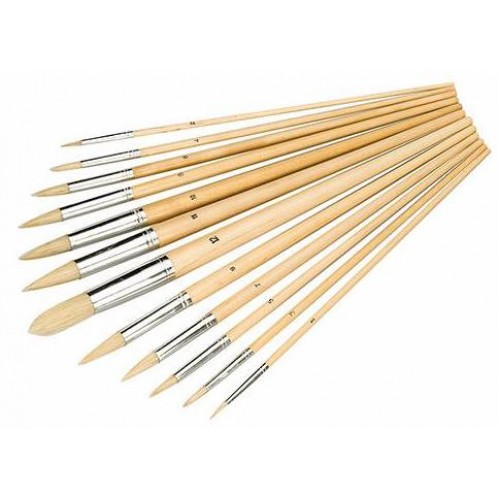 Pointed Tipped Artist Paint Brush Set 12 Piece